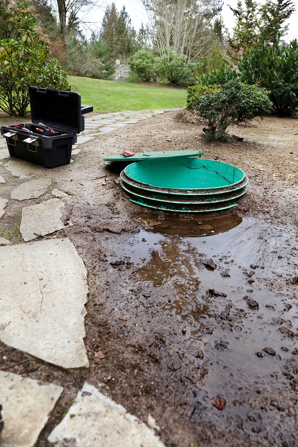 What-Is-Wrong-with-My-Septic-Tank--_-Insight-from-Your-Trusted-Chattanooga,-TN-Septic-Tank-Repair-Experts